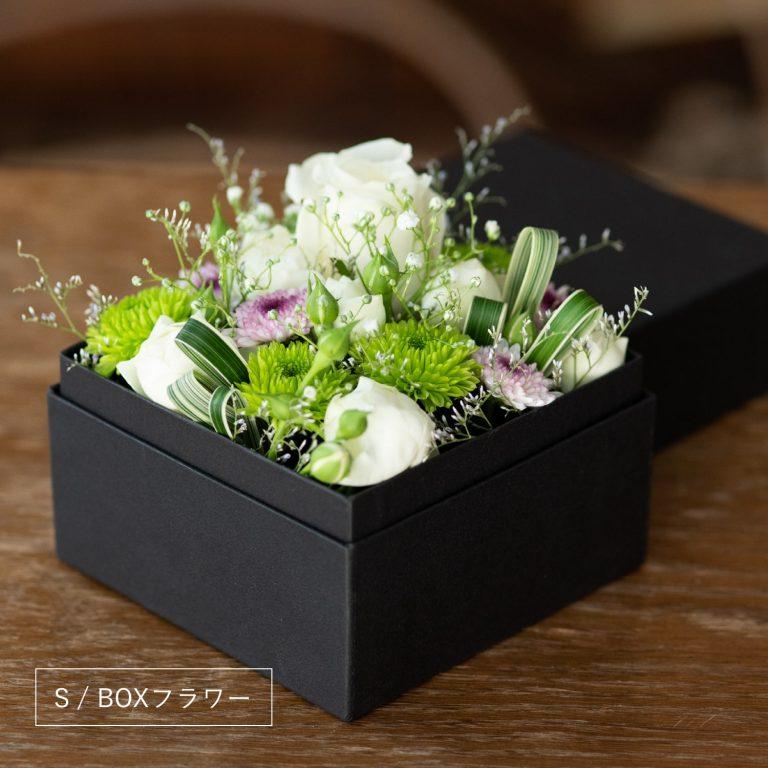 box-s