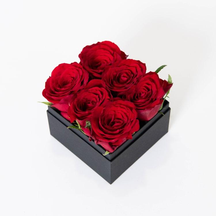 rose-6